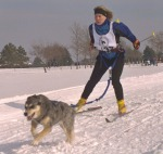 Woman Skijoring with Dog