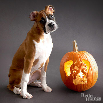 Dog Halloween Coloring and Pumpkin Carving Patterns